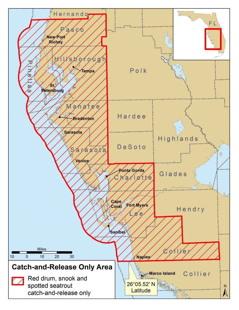 Snook, Redfish And Trout Closures For Parts Of Florida - Peacock Bass Florida Map