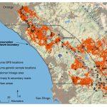 Southern California Mountain Lions' Genetic Connectivity Dangerously   Mountain Lions In California Map