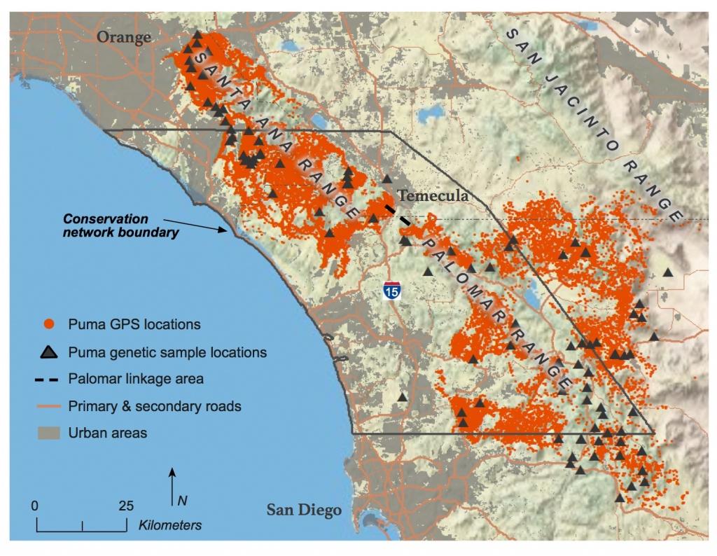 Southern California Mountain Lions' Genetic Connectivity Dangerously - Mountain Lions In California Map