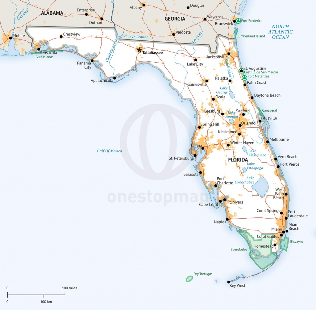 Stock Vector Map Of Florida | One Stop Map - Where Is Apalachicola Florida On The Map
