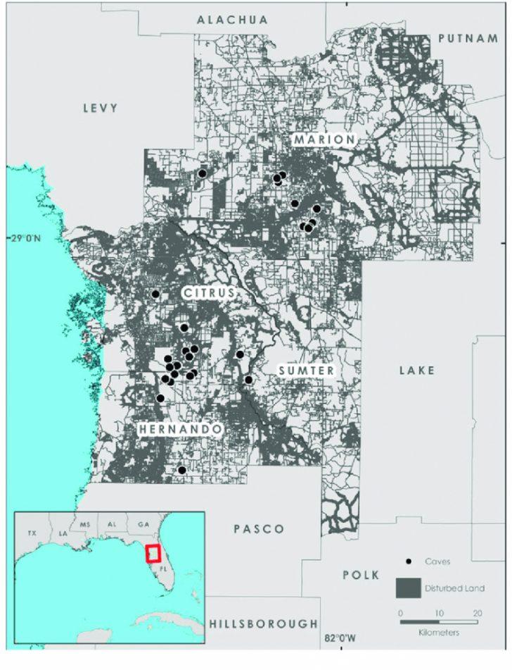 Map Of Hernando County Florida