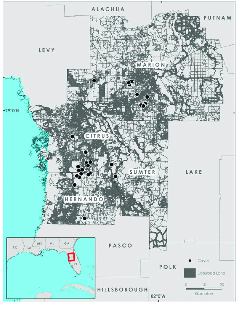 Study Area Map Of West-Central Florida (Hernando, Citrus, Sumter - Map Of Hernando County Florida