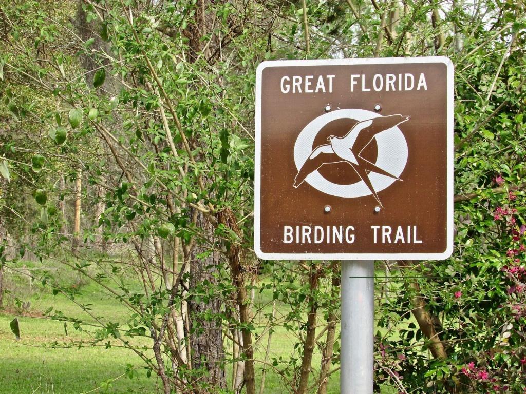 Tallahassee Daily Photo: Great Florida Birding Trail - Great Florida Birding Trail Map