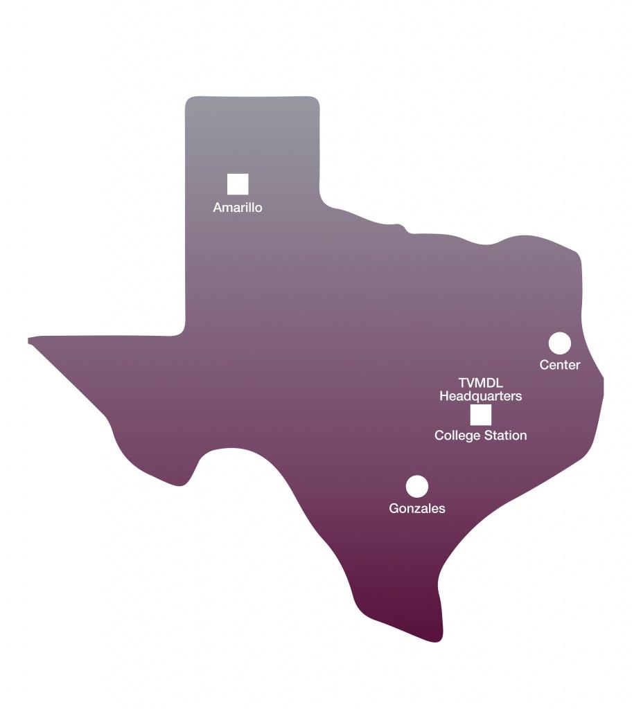 Texas Locations Map - Texas A&m Veterinary Medical Diagnostic Laboratory - Texas A&m Location Map