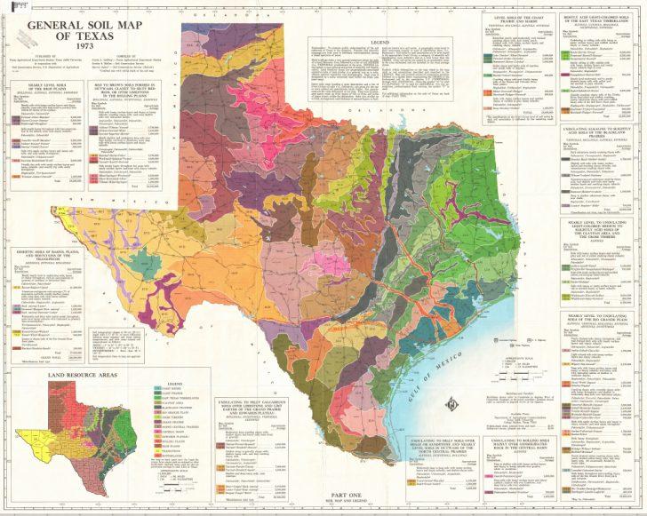 Texas Temperature Map