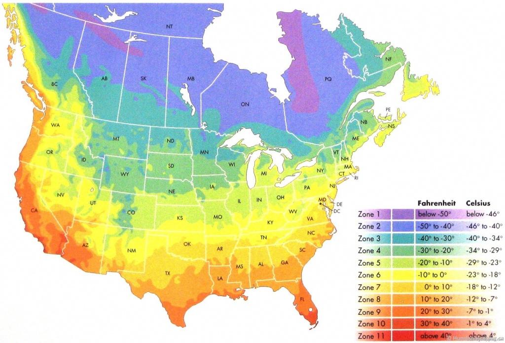 Usda Zone Chart - Carnivorous Plants For Sale! - Usda Zone Map Florida