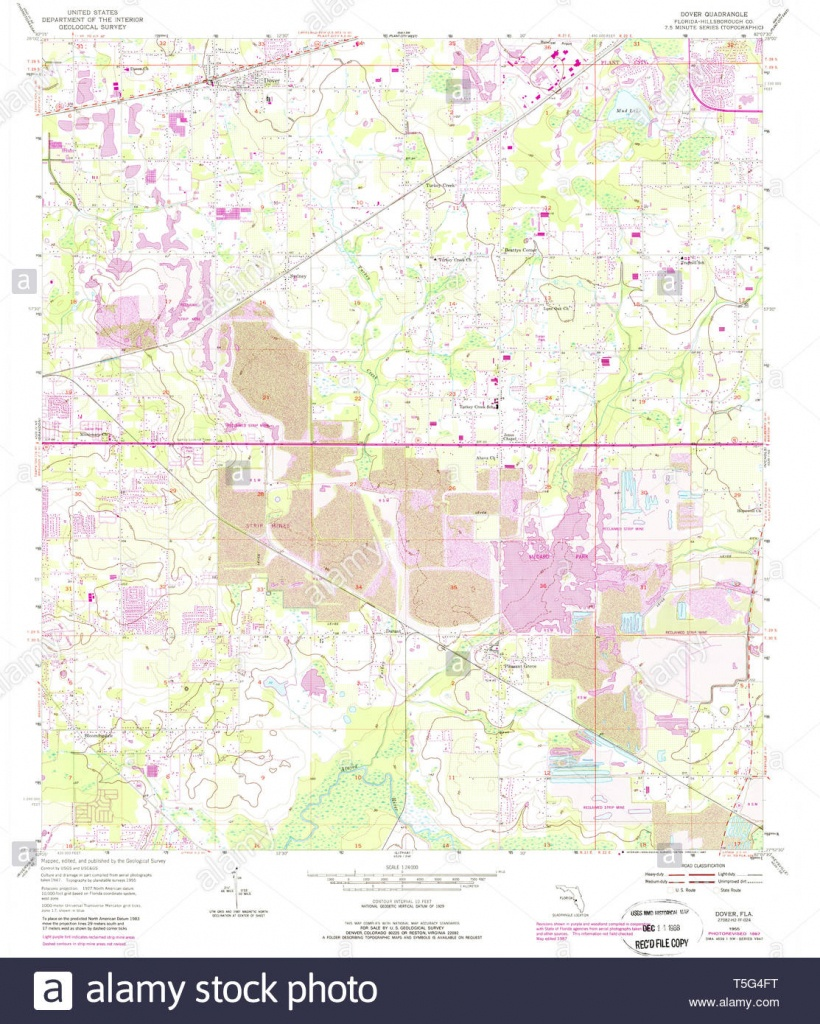 Usgs Topo Map Florida Fl Dover 345871 1955 24000 Restoration Stock - Dover Florida Map