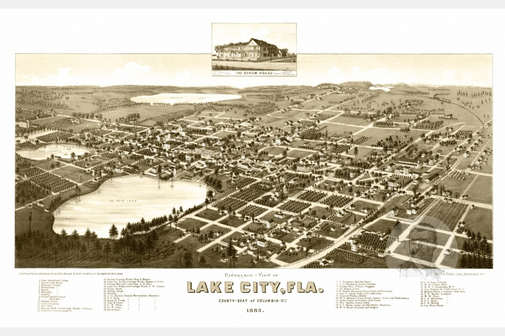 Vintage Map Of Lake City, Florida 1885 - Ted's Vintage Art - Map Of Lake City Florida And Surrounding Area